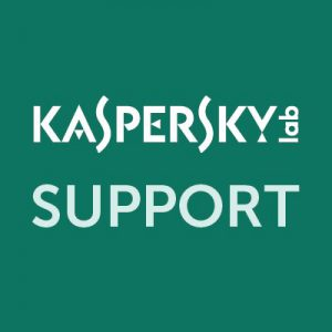 Kaspersky Business Support